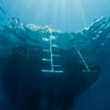 boat ladders, Red Sea, fishinfocus, Mario Vitalini