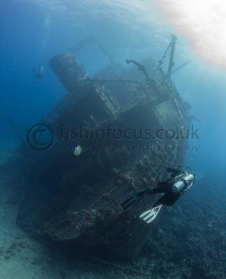 diver, fishinfocus, Giannis D, Mario Vitalini, underwater photography, Wreck