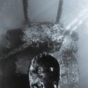fishinfocus, Mario Vitalini, Giannis D, Abu Nuhas, underwater photography