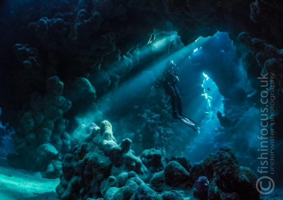 caves, diver, fishinfocus, Mario Vitalini, OMD, Red Sea