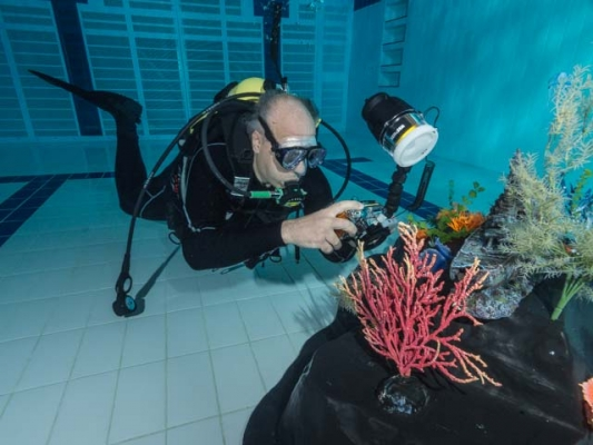 fishinfocus level 2 lighting for underwater photography, Mario Vitalini
