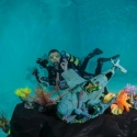 fishinfocus underwater photography reef, Mario Vitalini