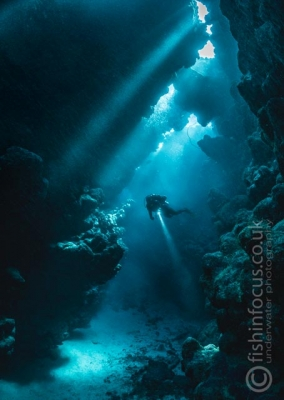 diver caves Red Sea, fishinfocus, Mario Vitalini, trips, workshops