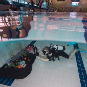 fishinfocus underwater photography pool session Mario Vitalini