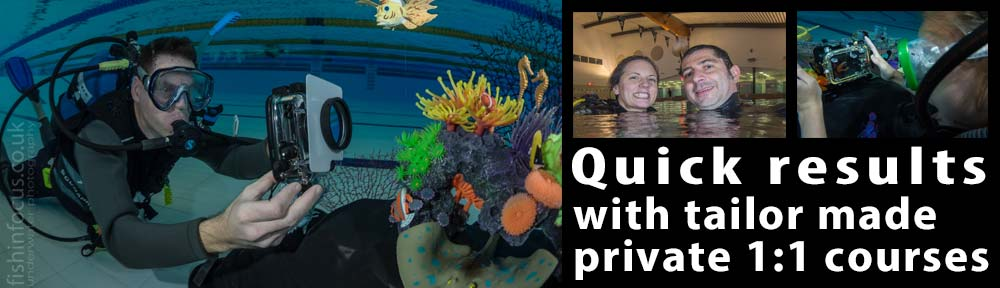 1:1 private underwater photography courses UK fishinfocus Mario Vitalini